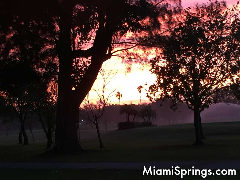 Good morning from Miami Springs